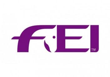 fei-logo2-square