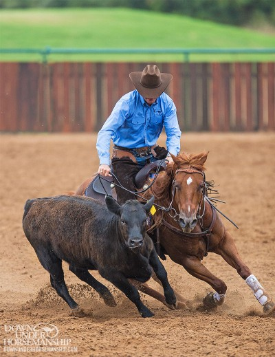 horses_10B